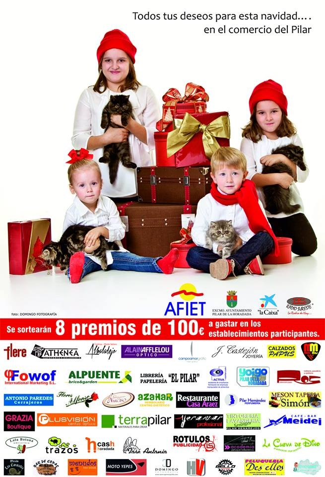 Gatitos Sibaritas en campaña navideña